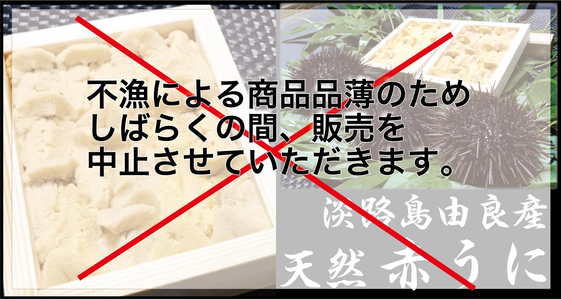 ウニ 通販 兵庫県淡路島 由良産の天然 赤 うに。おすすめ です